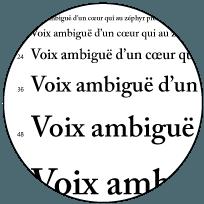 Publication Assistée par Ordinateur à Avignon