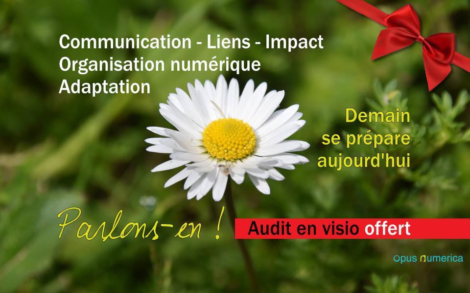 Audit en visio offert aux entreprises vauclusiennes