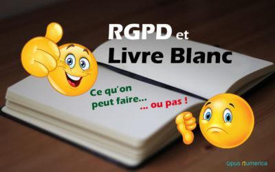 RGPD et Livre Blanc : comment concilier webmarketing et protection des données?